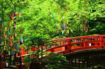 【わたどう】4話のロケ地は?七桜と城島が行ったカフェも!