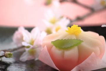 【わたどう】7話のロケ地は?七桜と栞が再会した神社とカフェも!